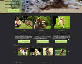 #9 untuk Urgent design for Dog trainer website oleh harisramzan11