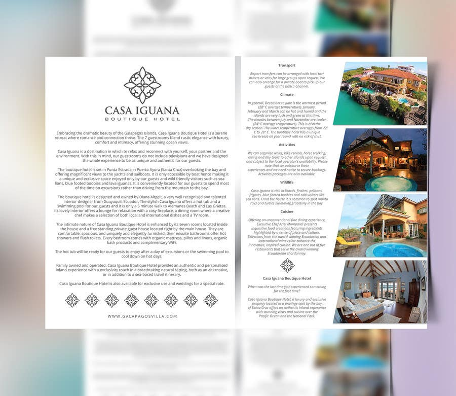 Entry 10 By Hernan2905 For Create Logo And Brochure For Luxury