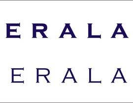 #12 for Design a Logo for KeralaNZ af IndraYoga