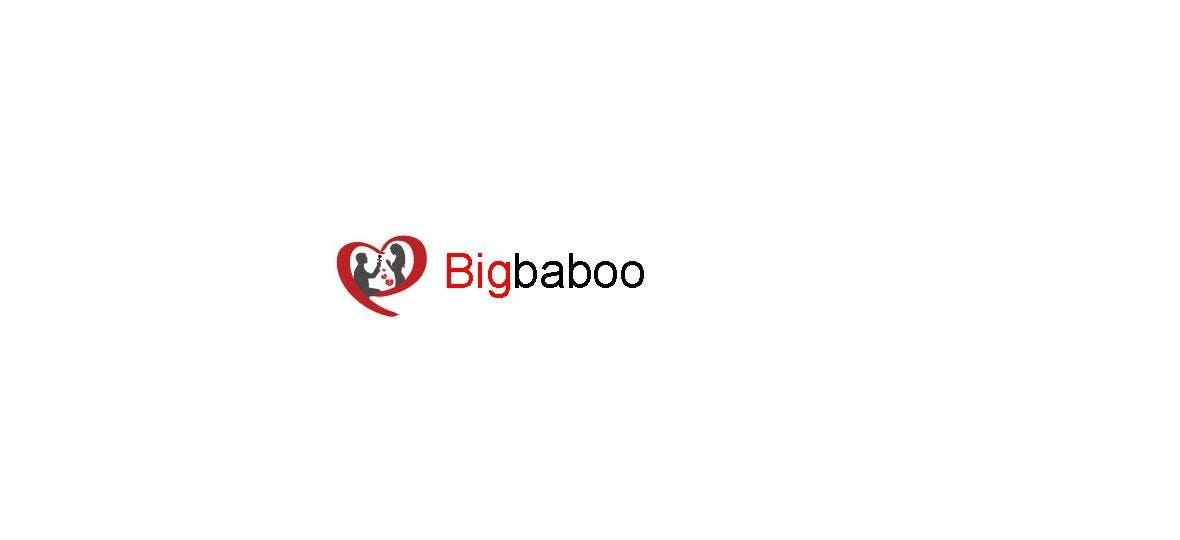 Bài tham dự cuộc thi #                                        120                                      cho                                         BigBaboo logo