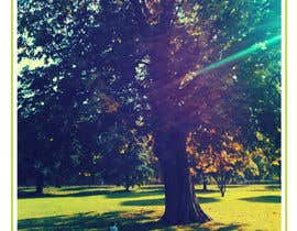 oanarmn tarafından Big Tree Poster için no 38