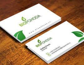 pvasi1707 tarafından Design a businnes card için no 10