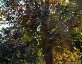 #35 untuk Big Tree Photo edit oleh sreedutt