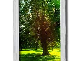 #84 untuk Big Tree Photo edit oleh sudipta007