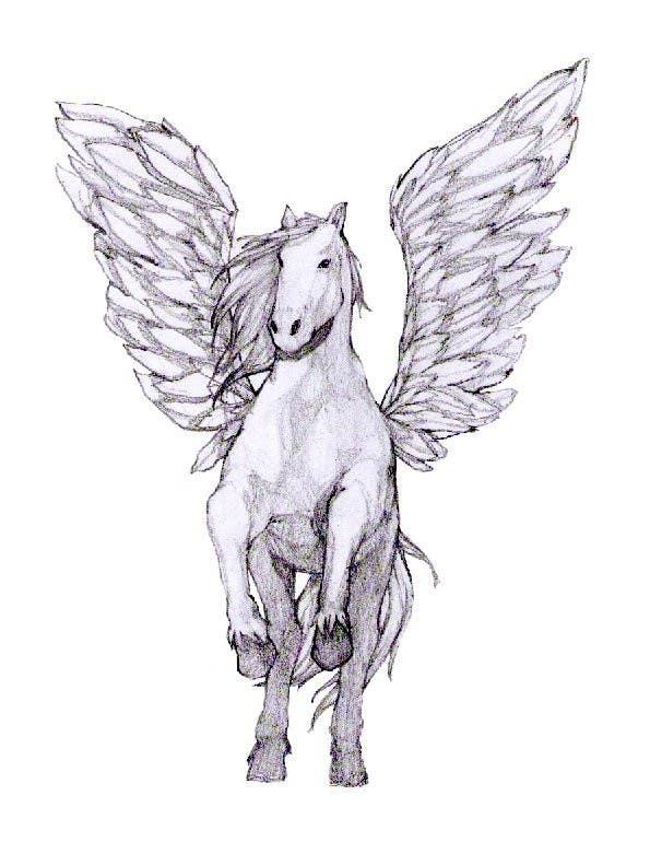 Kilpailutyö #19 kilpailussa Draw a Pegasus