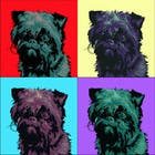 Contest Entry #18 for Affenpinscher dog converted to Pop Art