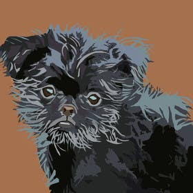 #10 for Affenpinscher dog converted to Pop Art by nishankumar