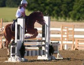 nº 2 pour Horse jump photoshop par mjarkas