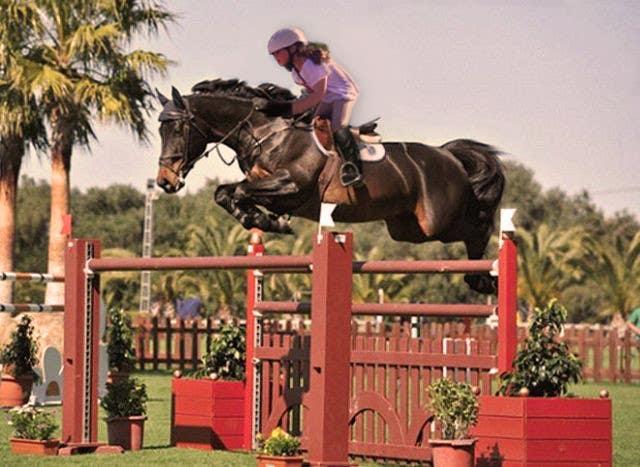 Bài tham dự cuộc thi #                                        45                                      cho                                         Horse jump photoshop