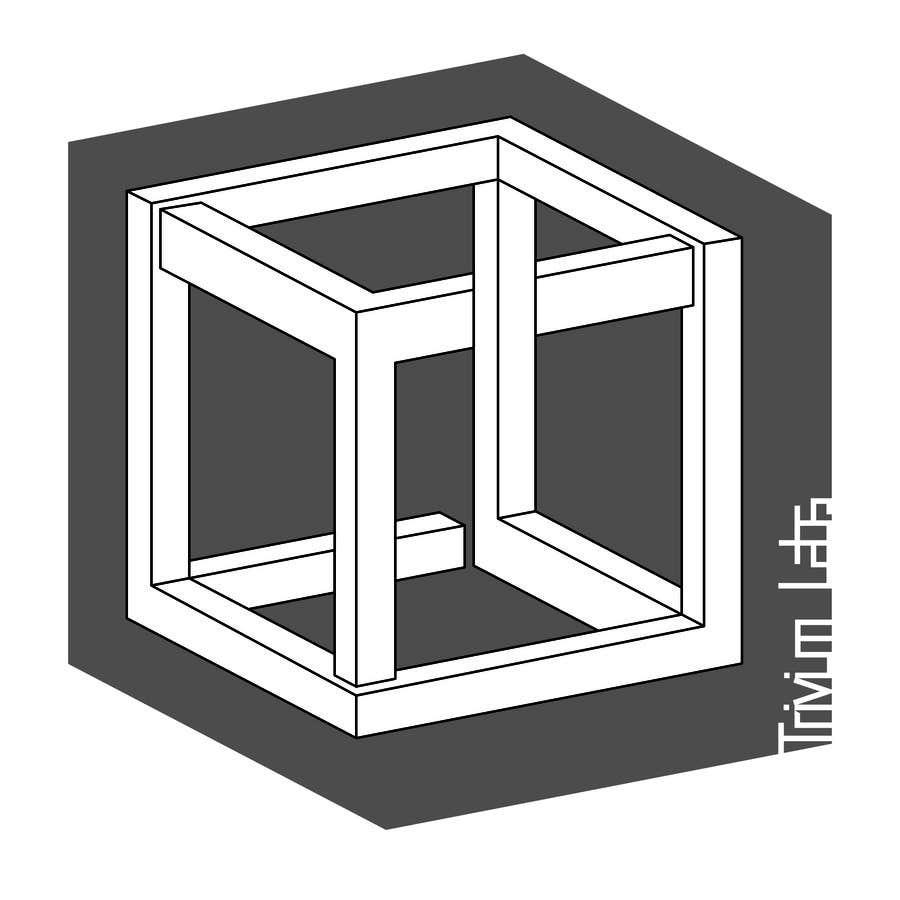 Penyertaan Peraduan #82 untuk Design a Logo for Trivium Labs