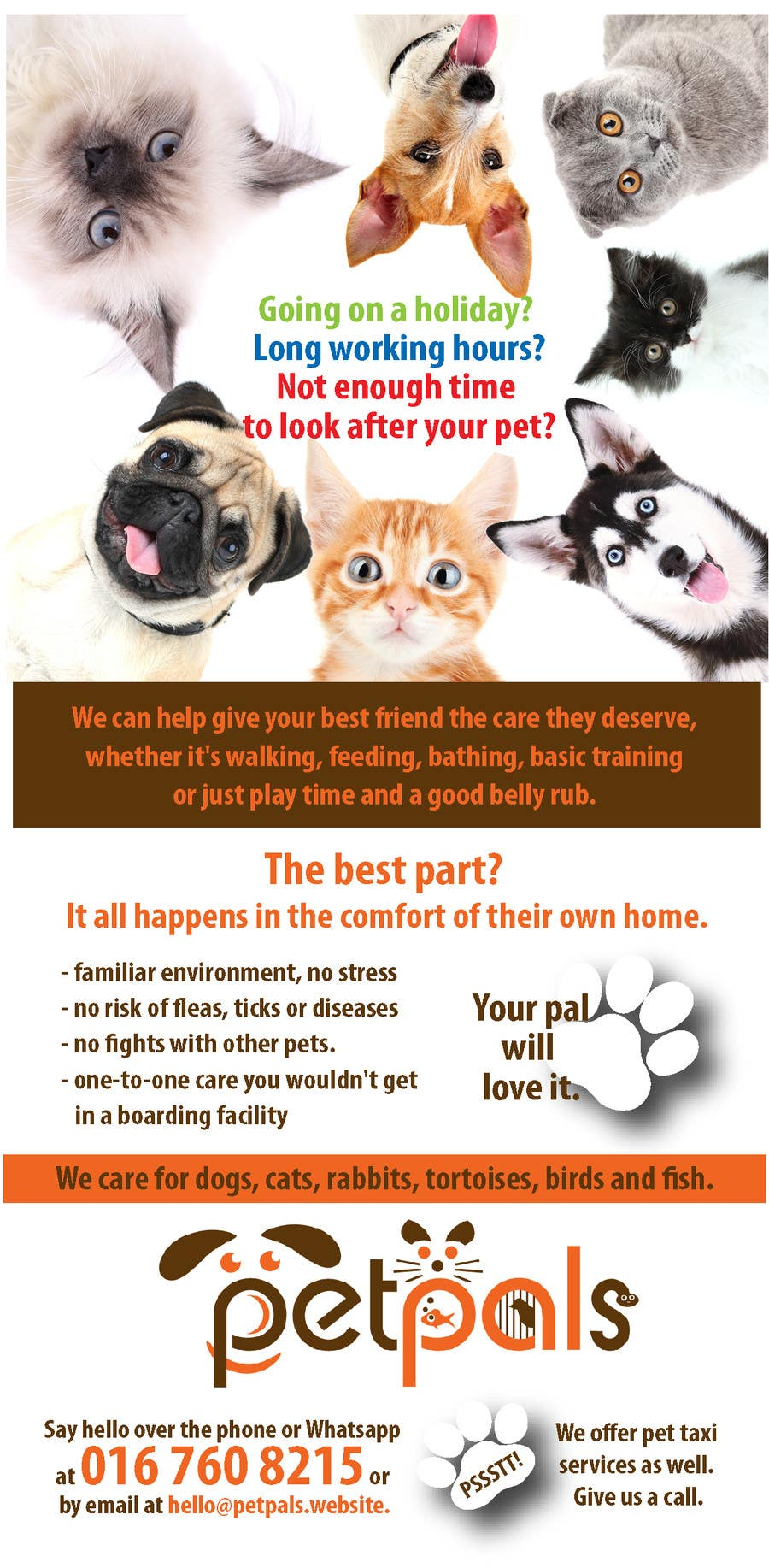design a flyer for a pet sitting business lancer 31 for design a flyer for a pet sitting business by rcoco