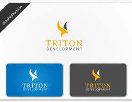 #186 para Design some Business Cards for Triton por rashedhannan
