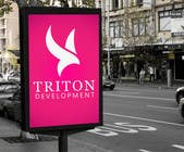 Design some Business Cards for Triton için Graphic Design204 No.lu Yarışma Girdisi