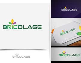 #138 for Bricolage concept & logo design af aquariusstar