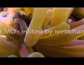 webchand tarafından Video Editing and Blending için no 10