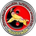 Graphic Design Kilpailutyö #25 kilpailuun REDesign a Logo for Martial Art Website