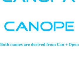 Nro 18 kilpailuun Find Me A Company Name käyttäjältä vivekdaneapen