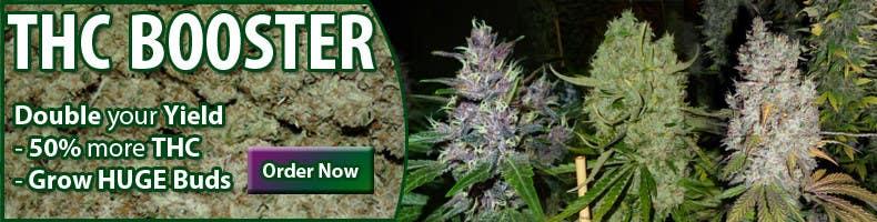 Bài tham dự cuộc thi #14 cho Design a banner for a marijuana fertilizer