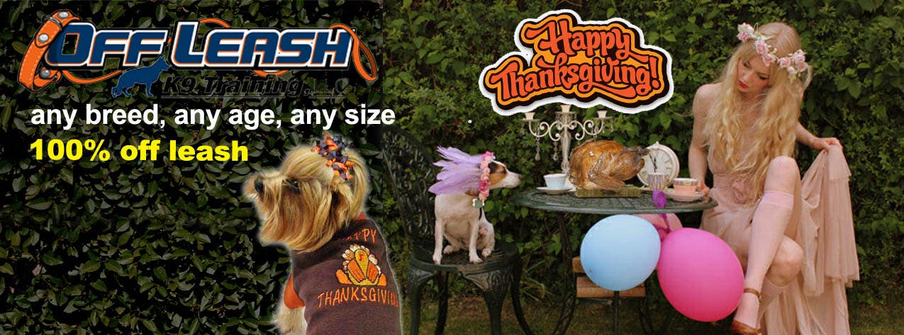 #22 for Thanksgiving Facebook Banner and Profile Pic by narina2014