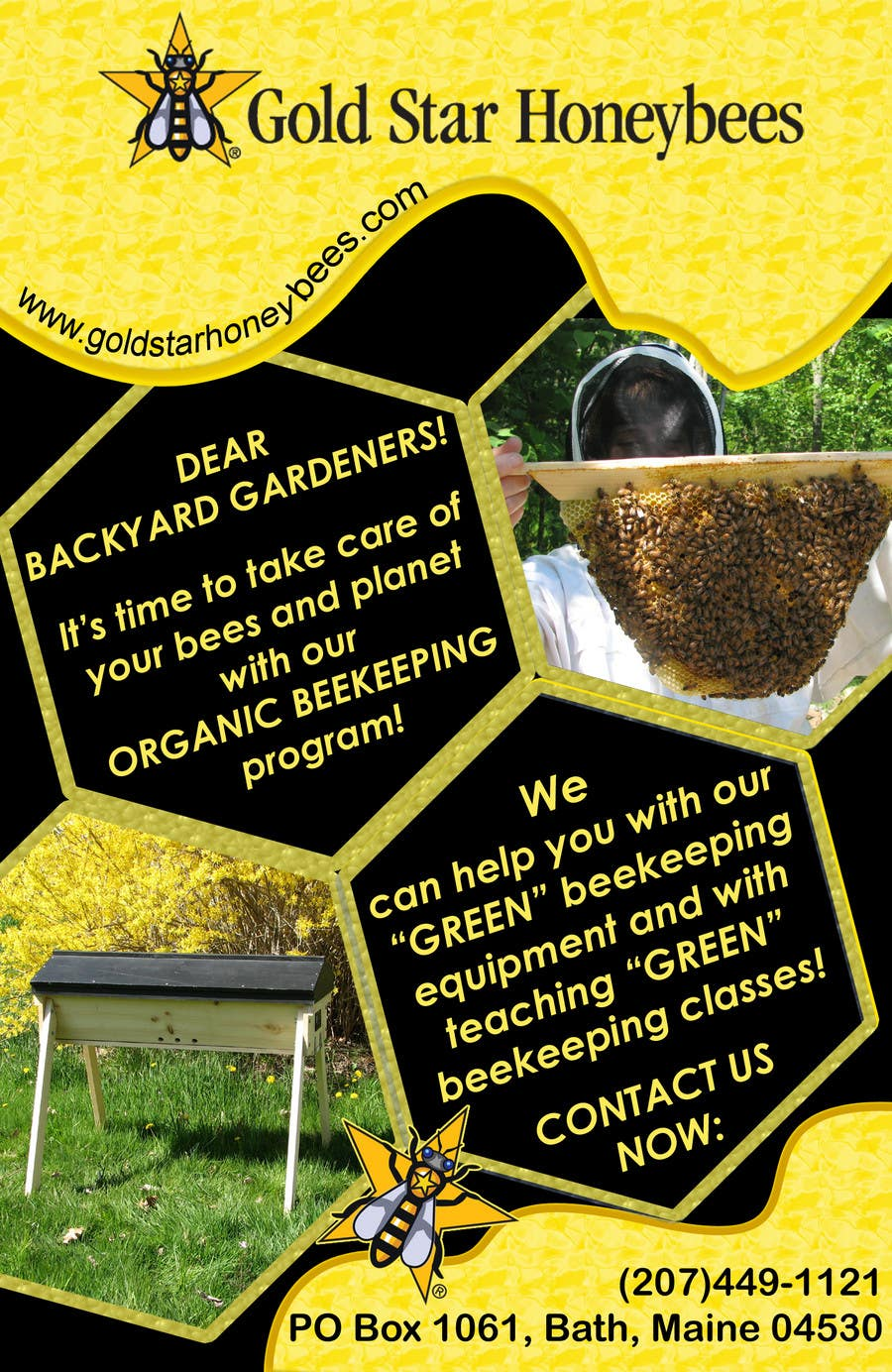 Contest Entry #                                        43                                      for                                         Advertisement Design for Gold Star Honeybees