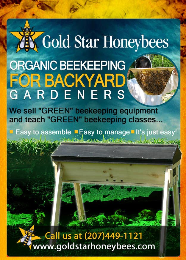 Contest Entry #                                        42                                      for                                         Advertisement Design for Gold Star Honeybees