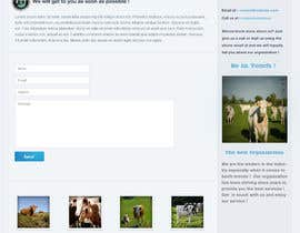 #50 for Website Design for Beefs Organization af walkingassassin