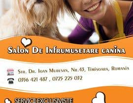 #29 for Pet Grooming Salon New Flyer Design by stniavla