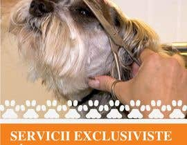 #39 for Pet Grooming Salon New Flyer Design by amcgabeykoon
