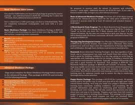 #8 for Design a Brochure for OLK9 Events with Package and Pricing Info by littysoman
