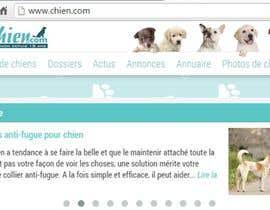 Nro 51 kilpailuun Design a (simple) logo for an editorial website about dogs käyttäjältä KalimRai