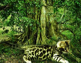 "nº 13 pour Create an amazing ""wild background"" for pics of my cat par tanveer230"