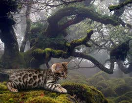 "nº 7 pour Create an amazing ""wild background"" for pics of my cat par marcelog4"