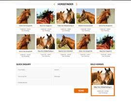 Nro 35 kilpailuun Design a horse searching website käyttäjältä princevenkat