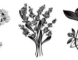 #16 cho Botanical illustrations: 3 flowers for product labels bởi pisicasfioasa