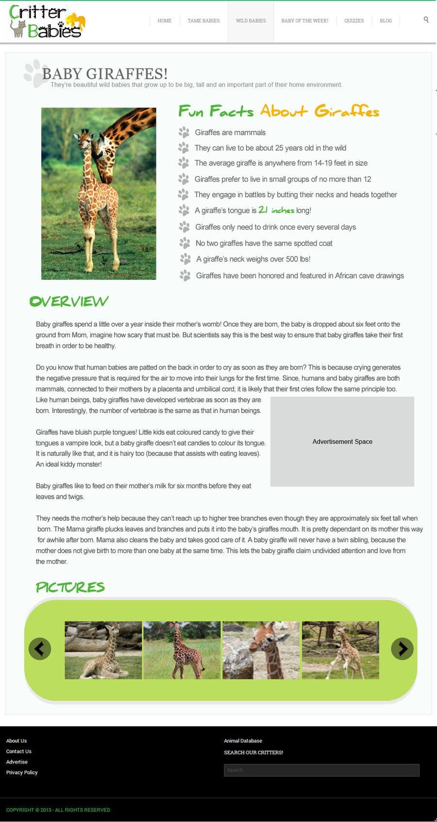 Proposition n°1 du concours Design a Website Mockup