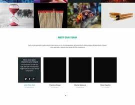 Nro 8 kilpailuun Design a Website Mockup - 11 käyttäjältä crowwred