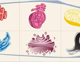 nº 14 pour Very Simple Illustration of a Cell par qaisfoodtec