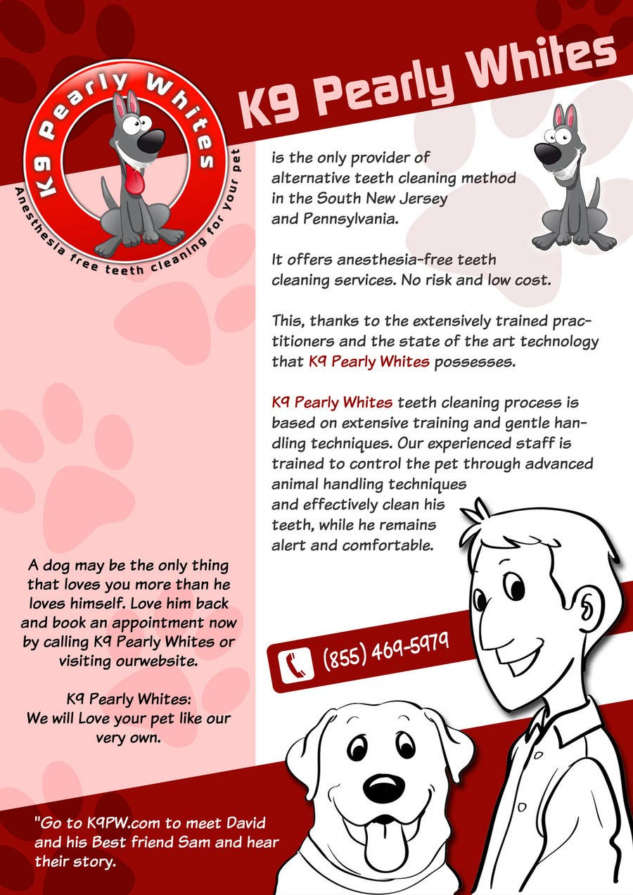 Contest Entry #                                        6                                      for                                         Flyer Design for K9 Pearly Whites [K9PW.com]