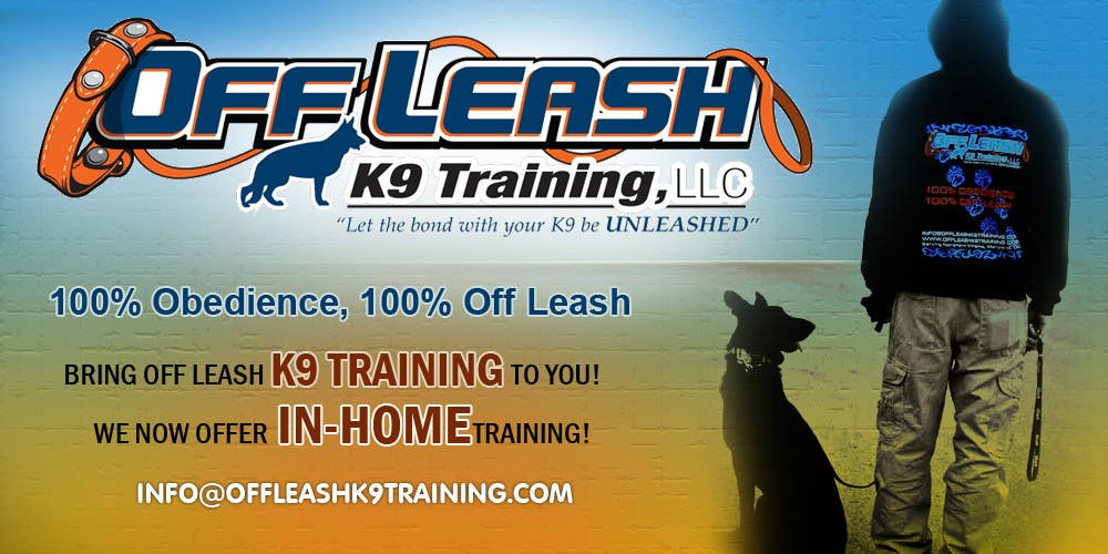 #3 for Design an Advertisement for Dog Training Business by designstudios365