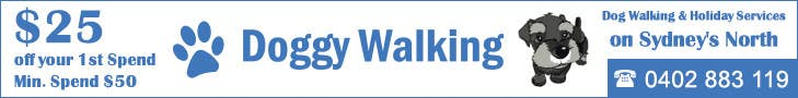 #17 for Design a Static Leaderboard Banner for Dog Walking Business by IllusionG