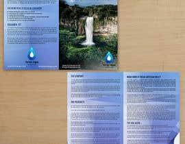 sdinfoways tarafından Design a Brochure -- 2 için no 15