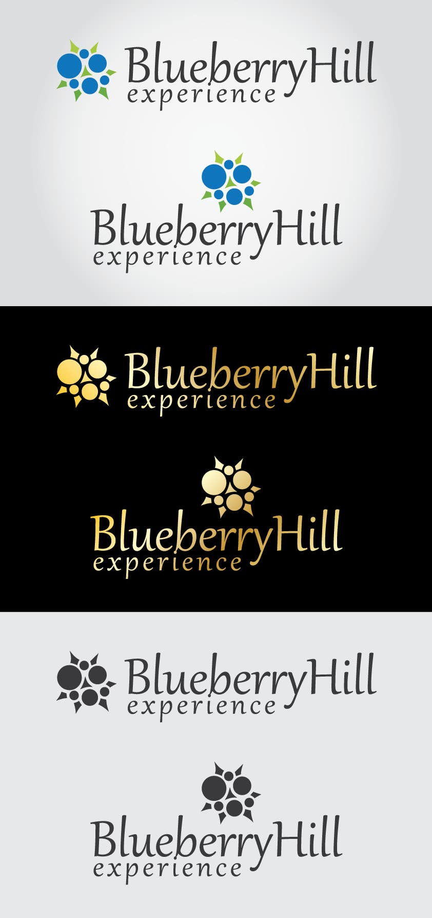 Конкурсная заявка №251 для Logo Design for Blueberry Hill Experience