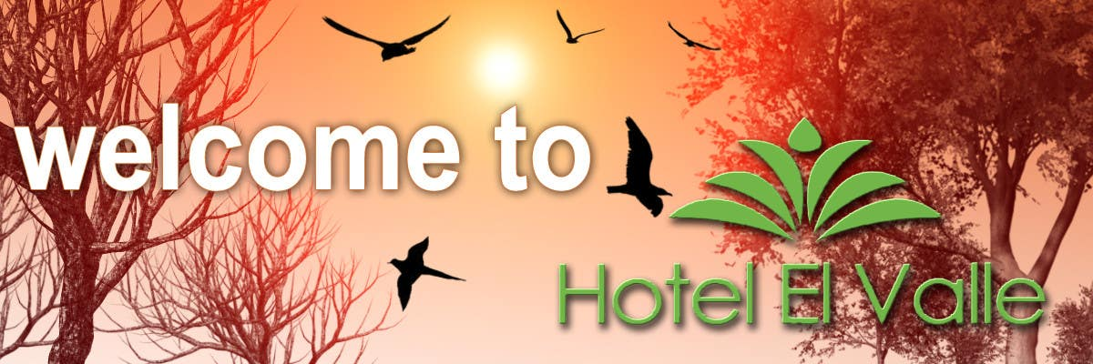 Конкурсная заявка №81 для Banner Ad Design for Hotel el Valle