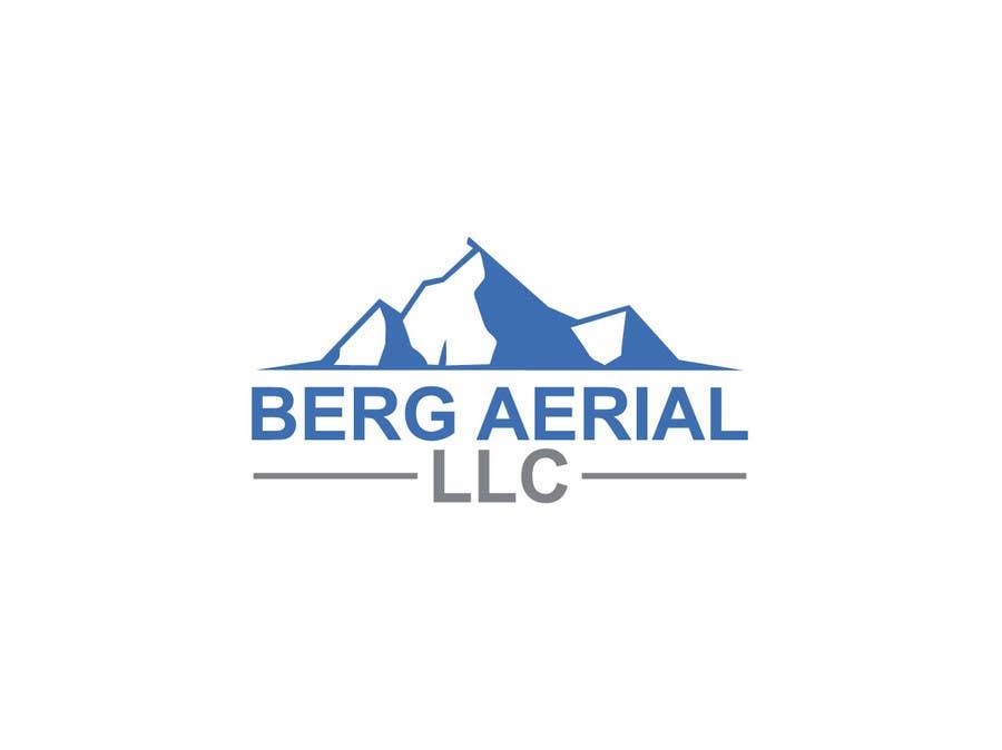 berg aerial logo design freelancer. Black Bedroom Furniture Sets. Home Design Ideas