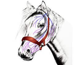 #9 for Equine Drawing Nerves and Head of the Horse by enriqueMatos
