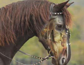 #2 for Equine Drawing Nerves and Head of the Horse by junjungwapa29