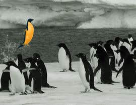 #7 cho Alter penguin image bởi arthur2341