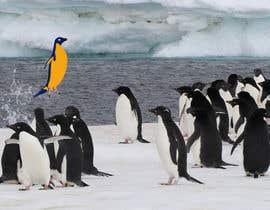 #24 cho Alter penguin image bởi koshal44