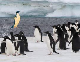 #19 cho Alter penguin image bởi Arpit1113