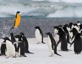 #5 cho Alter penguin image bởi jrainone